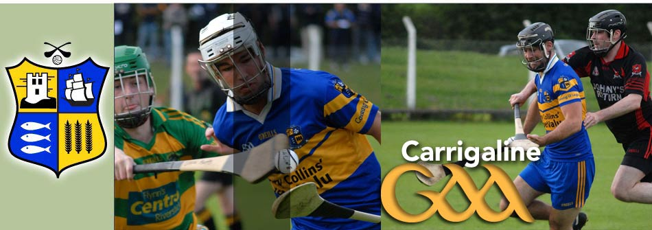carrigaline gaa hurling